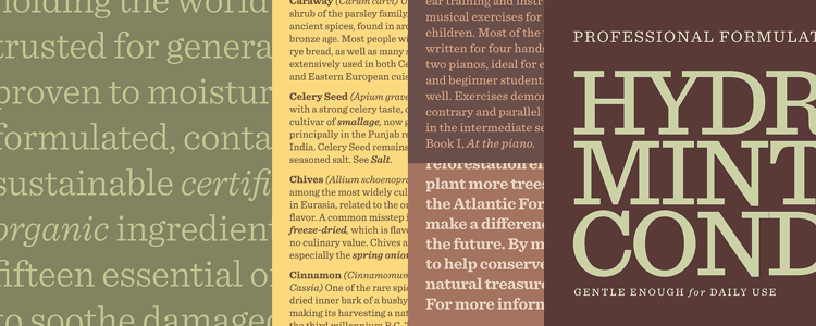 sentinel book italic font download