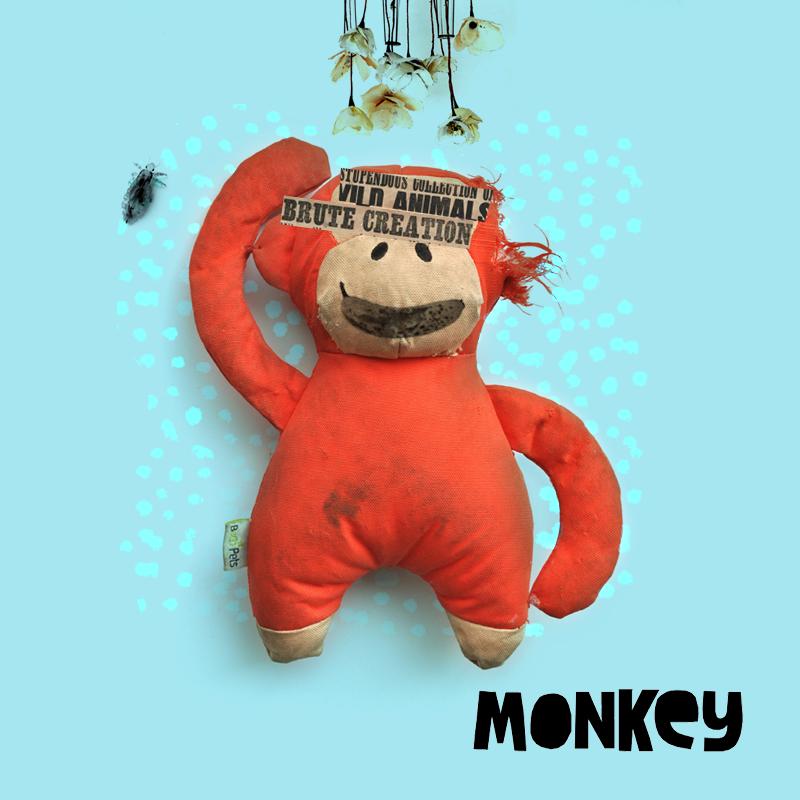 05_Monkey