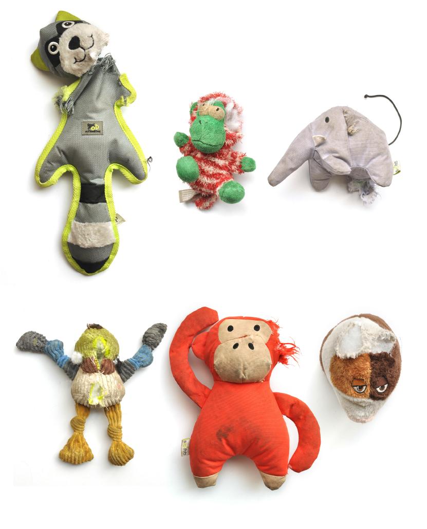 Dead_toys
